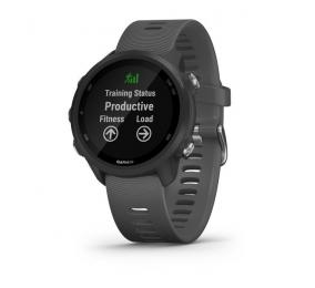 Smartwatch Garmin Forerunner 245 Cinzento