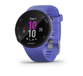 Smartwatch Garmin Forerunner 45S Íiris
